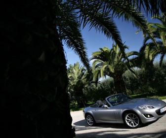Mazda Mx5 Silver Palm Trees Wallpaper
